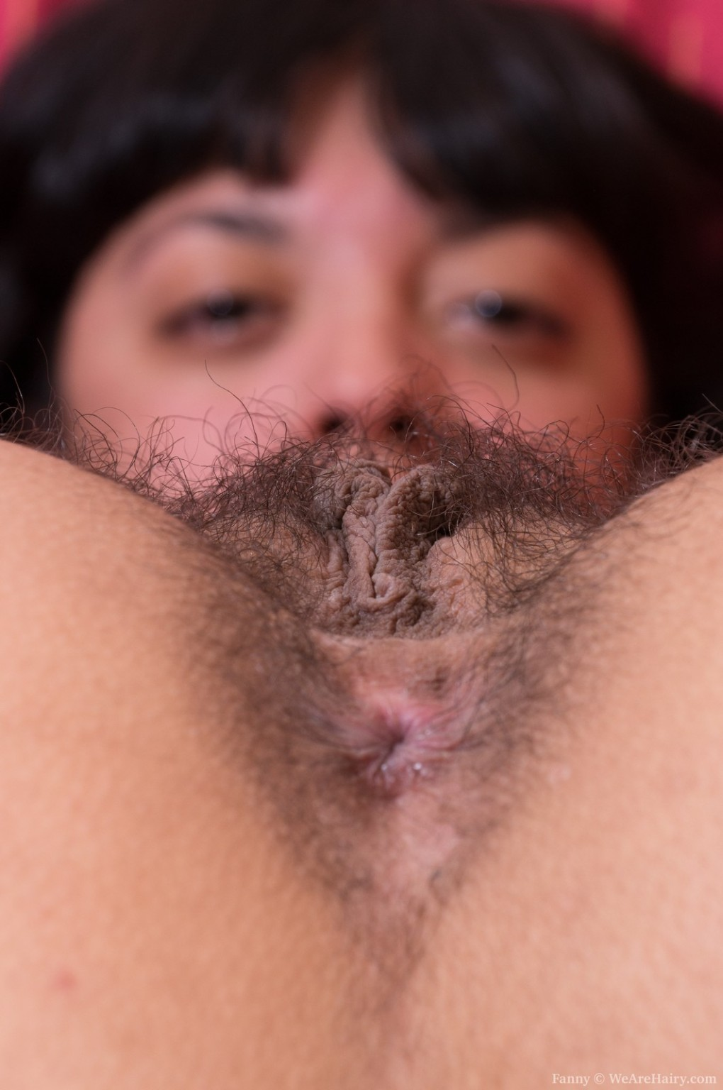 adult-hairy-mexican-cunt-love-shower-porn