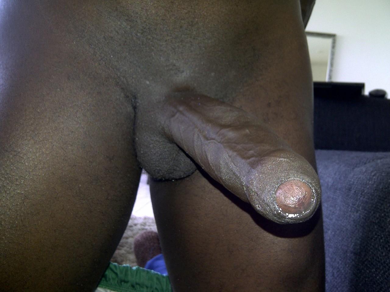 Порно черные члены крупным планом на весь экран