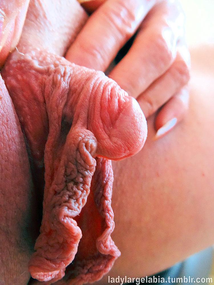 огромные половые губы и клиторы фото захотел