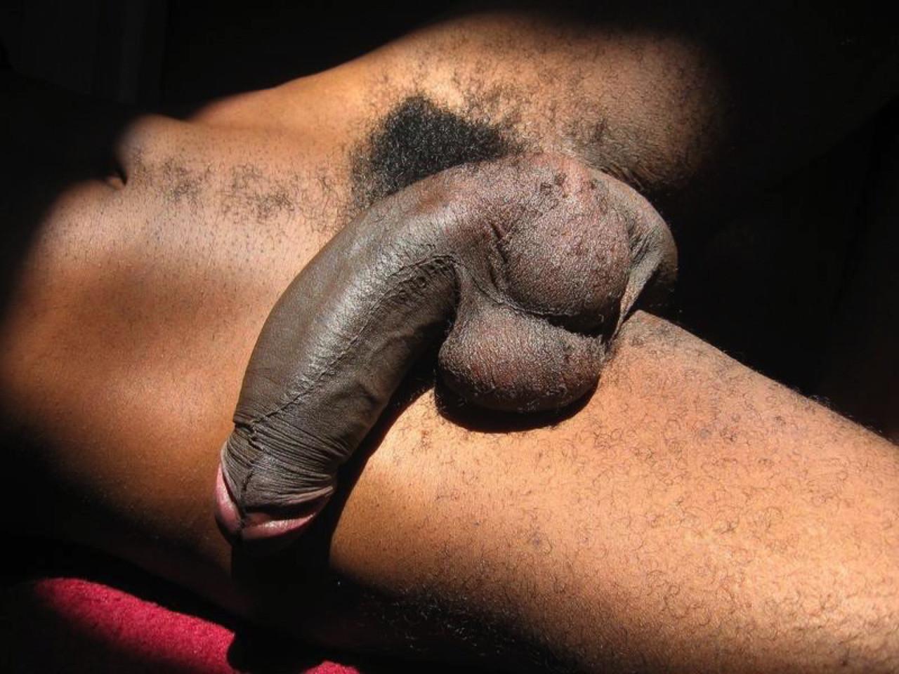 bang-barcelos-cock-pictures-porn