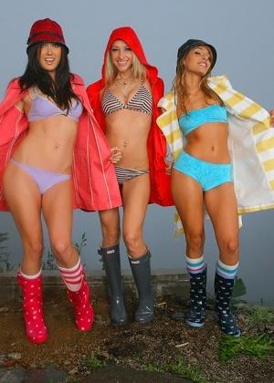 Три би модели